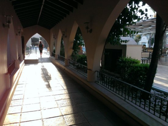 Napa Plaza Hotel: Gang zum Pool