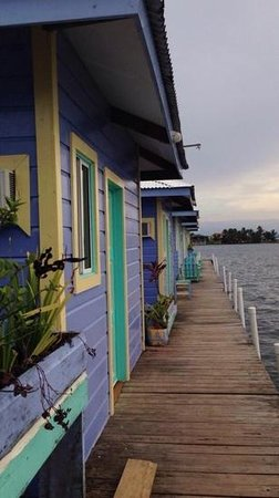 Careening Cay Resort: view of our beautiful Bocas home.