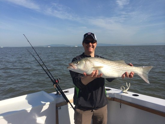 1 of 4 bags of fillets picture of san francisco fishing for Charter fishing san francisco