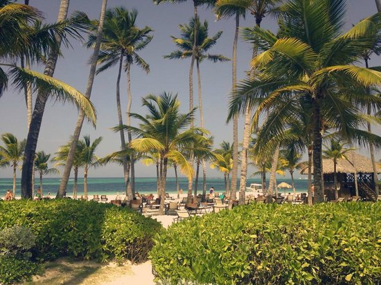 Secrets Royal Beach Punta Cana: Beautiful!