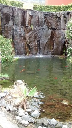 La Palma Princess & Teneguia Princess: Pond and waterfall in Hotel grounds
