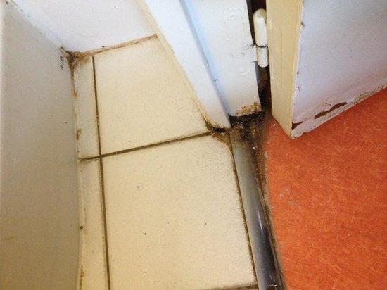 Premiere Classe Lyon Est - L'Isle D'Abeau : entrée de la douche, encadrement intérieur de la porte