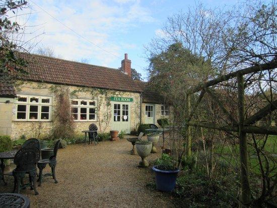 Lacock Abbey: Lacock Tea House Garden in Town