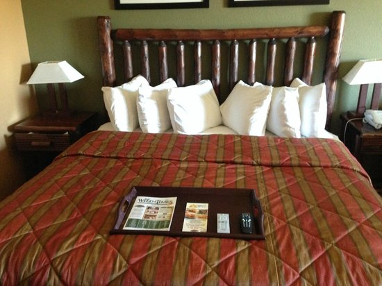 Wilderness at the Smokies Resort: Nice king sized bed