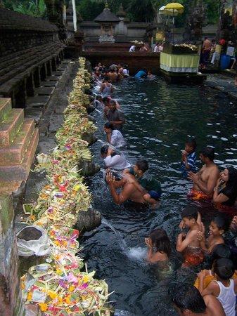 Bali Must Be Crazy: Temple de l'eau sacrée