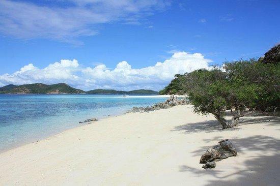 Malcapuya Island : view