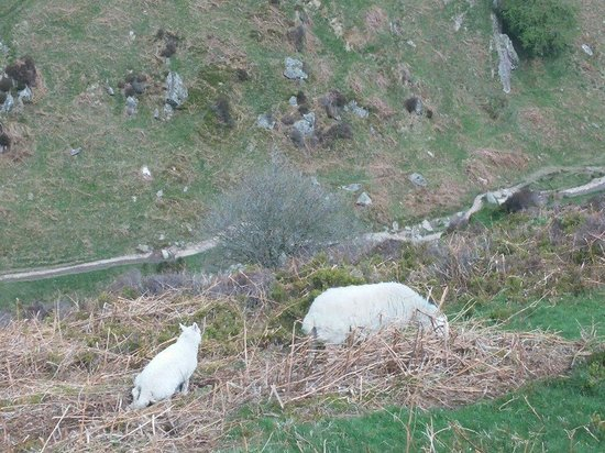 Carding Mill Valley: From top