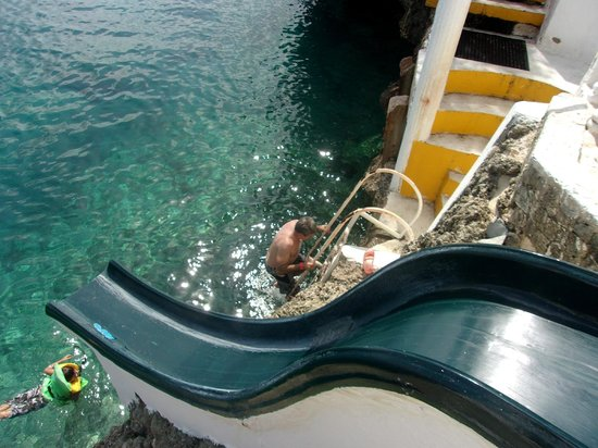 Hotel Blue Cove: la piscina