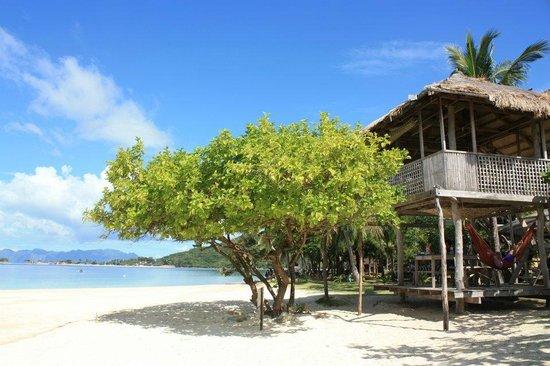 Banana Island: two floor hut