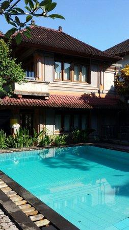 Ubud Terrace Bungalows: The pool
