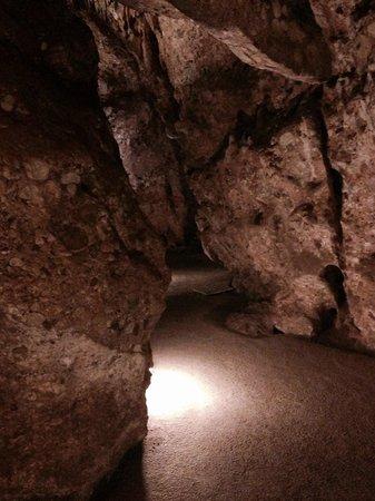 Las Cuevas del Salitre: Una galeria. Si vas el primero o el ultimo mejor.