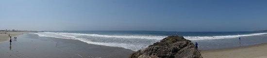 Ventura Beach Marriott: The beach