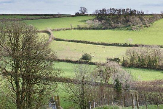 View from Bocaddon farm