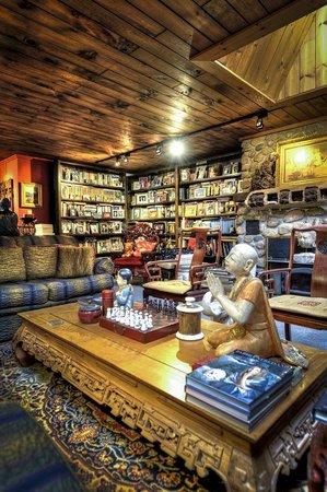 Shambhala Bed and Breakfast: Library