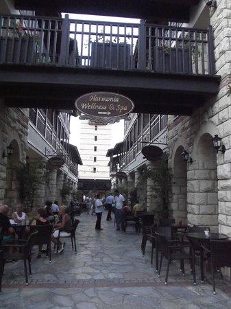 Paloma Grida Resort & Spa: upon entering the hotel