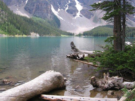 Moraine Lake: Stunning!