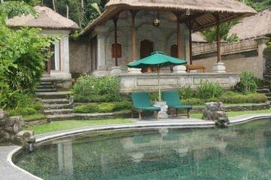 The Royal Pita Maha: Private pool in room