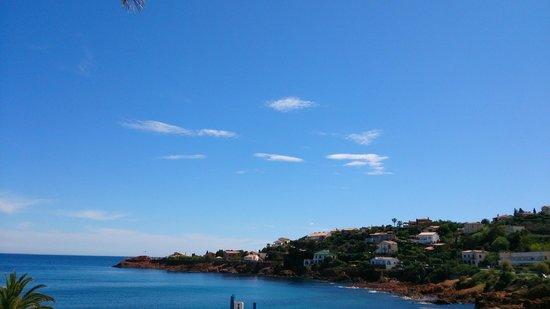 Les Flots Bleus : La vue de la terrasse