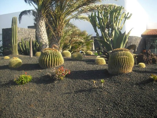 Barcelo Castillo Beach Resort: outside resturant