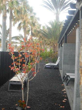 Barcelo Castillo Beach Resort: front of junior suites