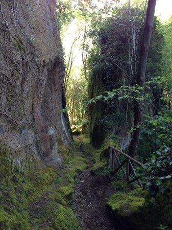 Pitigliano, Italy: Vie cave
