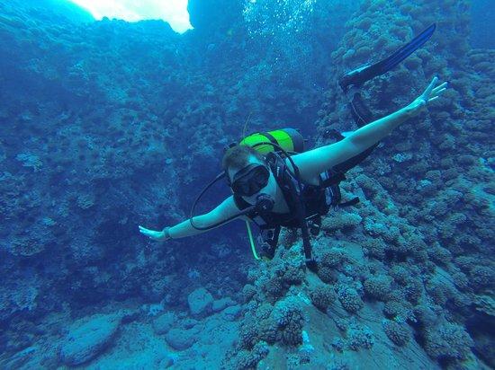Buceo Isla de Pascua : Mergulho é Vida