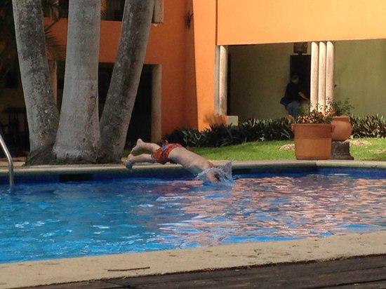 Hotel Hacienda Uxmal Plantation & Museum: La piscine très agréalbe avec petit et grand bain