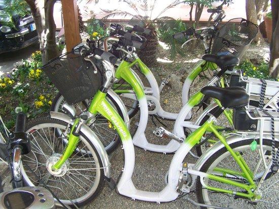 Hotel Gabriella : Les vélos pour les clients