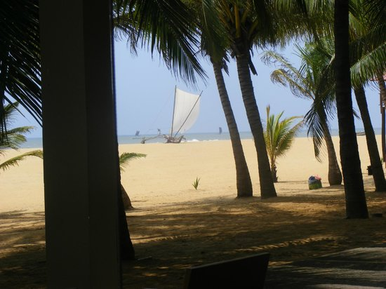 Jetwing Blue : A view of the beach..............