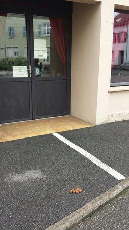 Kyriad Colmar Centre - Parc Des Expositions: Una bella cacca di cane all'ingresso del ristorante dell'hotel. Non la puliscono da giorni!
