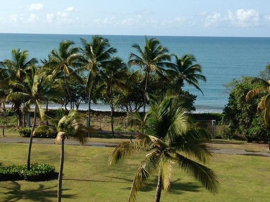 Hilton Ponce Golf & Casino Resort: Room with a view