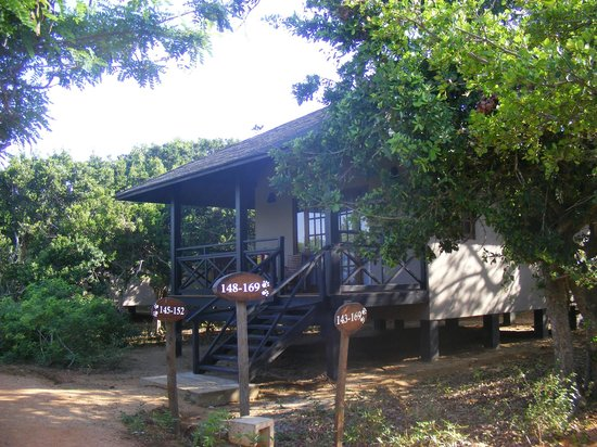 Cinnamon Wild Yala: One of the other, raised, bungalows