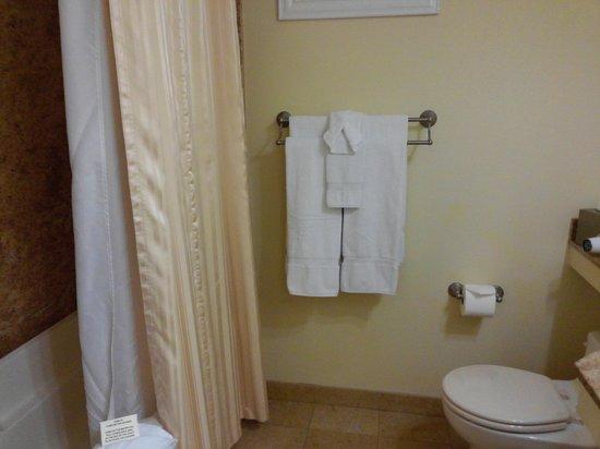 Bel Abri Napa Valley Inn: Bathroom and shower