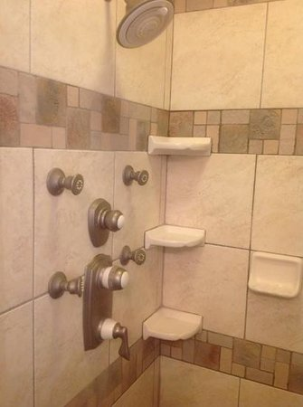Beacon House Inn Bed & Breakfast: great multi fawceted shower