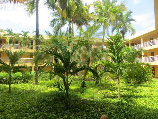 VH Gran Ventana Beach Resort: Garden right outside of our room