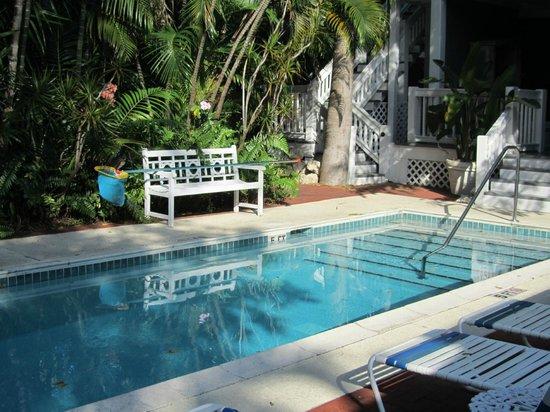 Ambrosia Key West Tropical Lodging: main pool