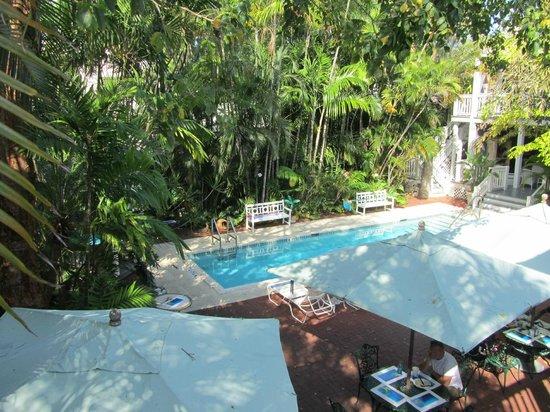 Ambrosia Key West Tropical Lodging: pool