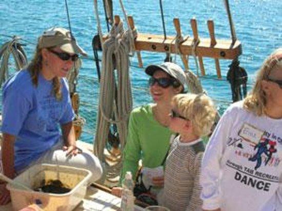 Inland Seas Education Association: Science