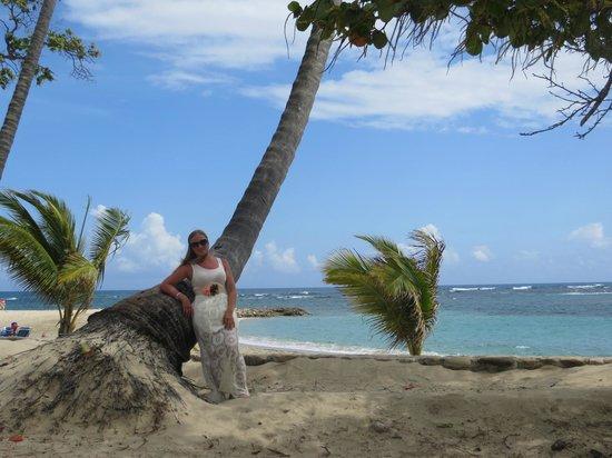 VH Gran Ventana Beach Resort : Beautiful beach...