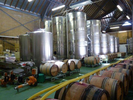 Denbies Wine Estate: where they make the wine