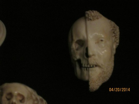 The Walters Art Museum : Cool ivory carving
