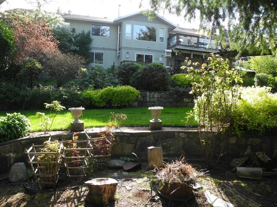 The Funky Frog B&B: Back of the house from the garden
