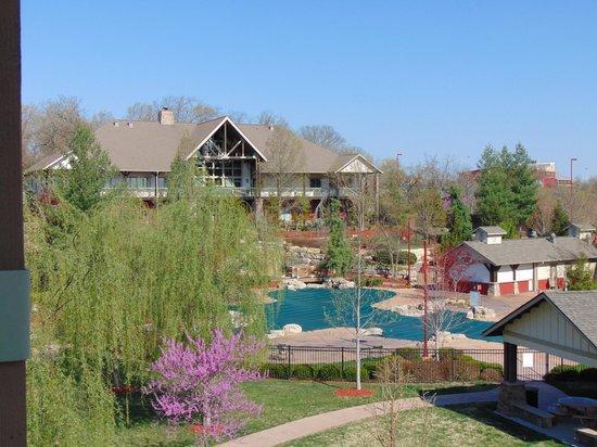 Marriott's Willow Ridge Lodge: Vista desde nuestra Villa