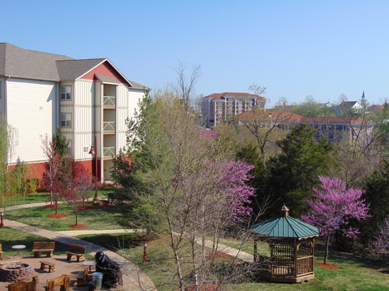 Marriott's Willow Ridge Lodge: Alrededores del Hotel