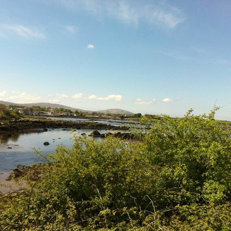 Doolin Cottage Bed & Breakfast : Ailwee River