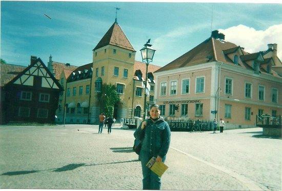 Museo Gotland: Visby, Gotland