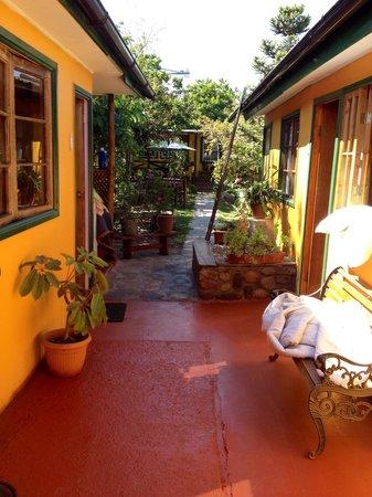 hostal maria casa: Beautiful Garden