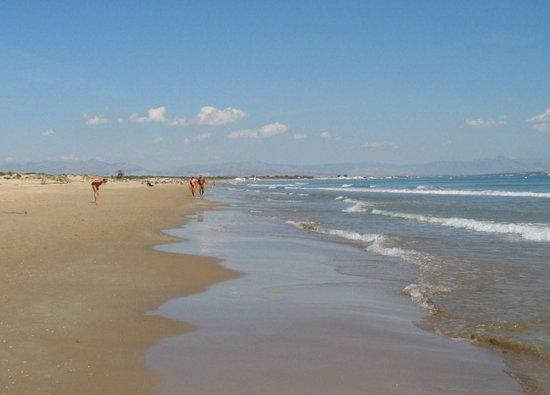 Playa de Guardamar: Los Tusalas Guardamar