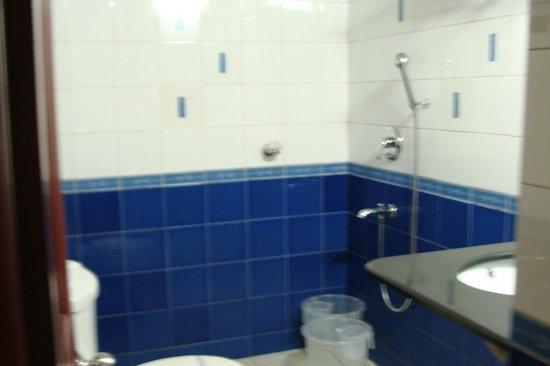 Las Palmas Munnar: well equipped clean bathroom