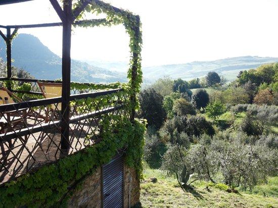 Agriturismo Podere San Lorenzo: vista